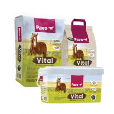 Pavo Vital - Daily vitamin and mineral balancer