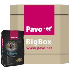 Pavo AllSports - The sport feed for every discipline